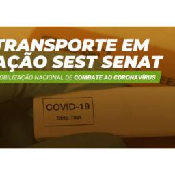 testes covid-19 sest senat